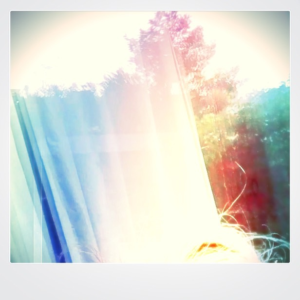 window-polaroid